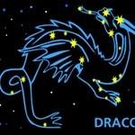 Dark-Draco