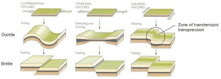 Shearing Tectonics Related Keywords & Suggestions - Shearing ...