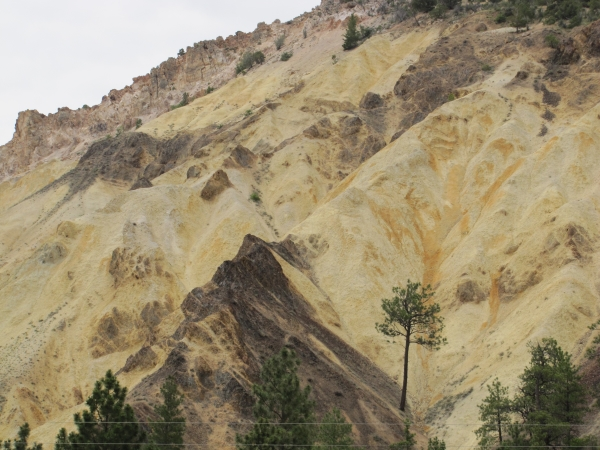 harry mcclintock big rock candy mountain