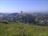 Forte de Ribas - vale