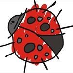 LadyBug_3
