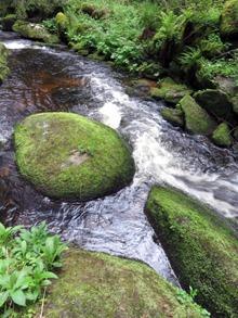 Hrádecký potok