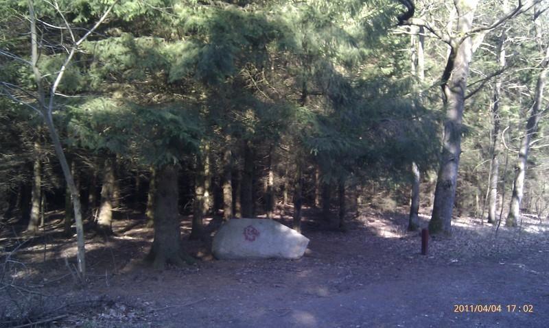 Soldaterskoven