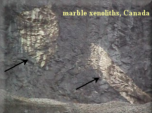 xenolith1