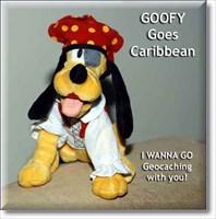 I am a Pirate - GORSCH