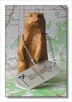 Racing Flanders Marmot