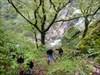 Henriquez rappel 2 log image