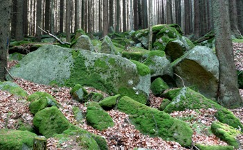 Kamenné moře nad cestou