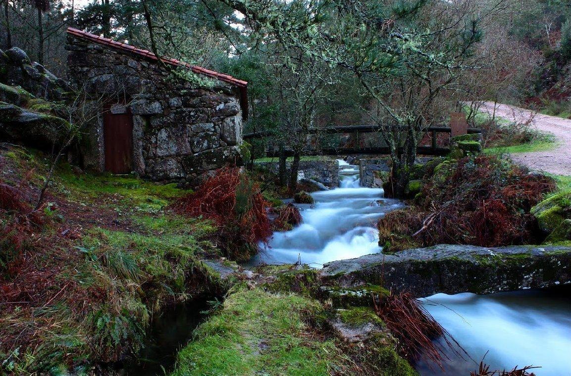 Monte Aloia Nature Park In Galicia Spain