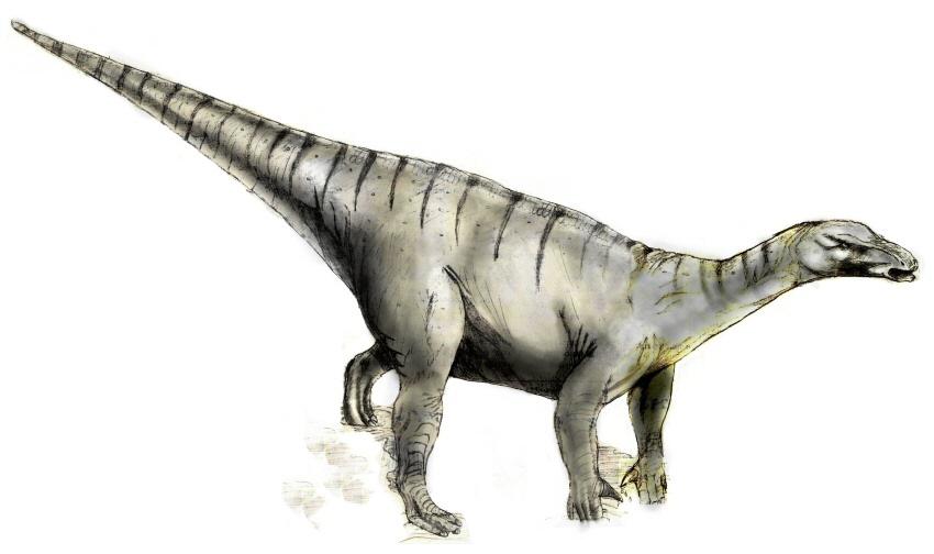 Iguanodon - dávný obyvatel naší vlasti