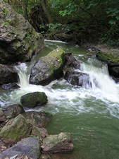 Šárecký potok