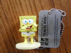 Spongy Travel Bug
