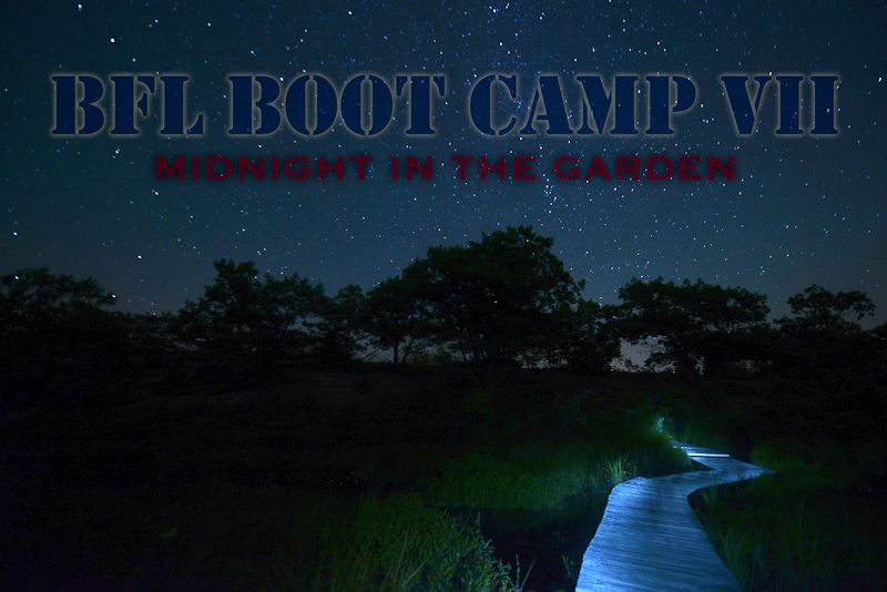 BFL Boot Camp 7 - Midnight in the Garden