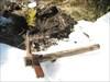 uma ferramenta, uma pinga de suor, uma futura árvo log image