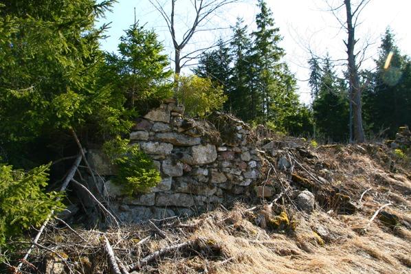 Ruiny domu na st.p. 66