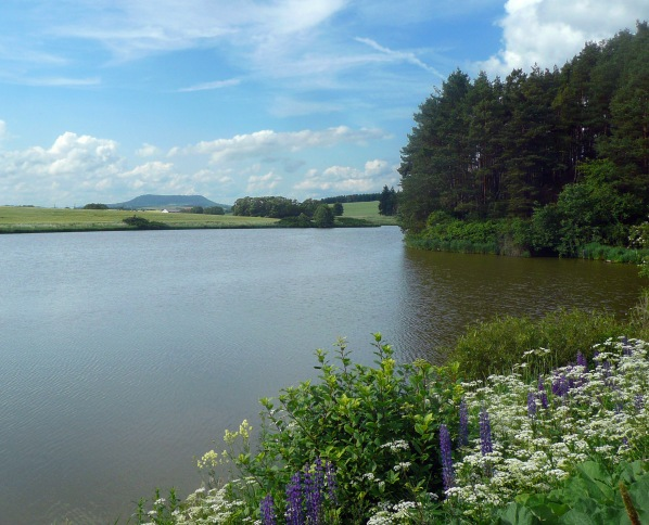 Velký Pardouskův rybník aVladař