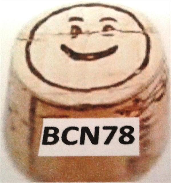 avatar de BCN78