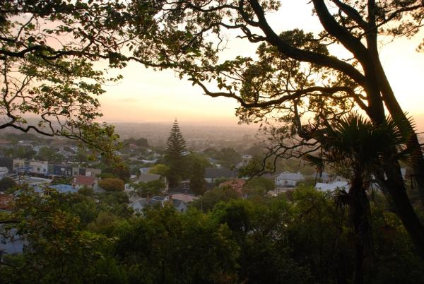 Evening impression on Mount Eden