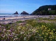 Eugene, Cascades & Coast GeoTour Gallery