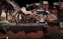Visit Mesa Autism Travel GeoTour Gallery