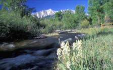 Buena Vista Geocaching Journey GeoTour Gallery