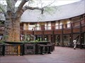 Image for Majestic Baobab Tree in a Beautiful Hotel Lobby - Kasane, Botswana