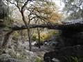 Image for Natural Bridge Caverns, TX