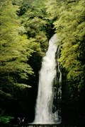 Image for Hidden falls - Hollyford Valley