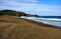 Image for Tihaka Beach