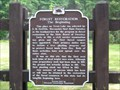 Image for Forest Restoration - The Beginning