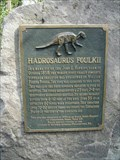 Image for Hadrosaurus Foulkii - Haddonfield, NJ