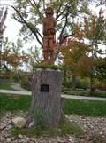 Image for Carved Indian - West Seneca, NY.