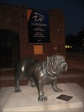 Image for Spike, the Drake Bulldog – Des Moines, IA
