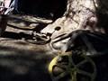 Image for Big Thunder Mountain Mining Gear Wheels Hidden Mickey