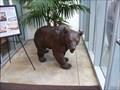 Image for Cliff House Bear - San Francisco, California