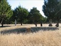 Image for Prairie Grove Cemetery - Nevada, Texas