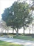 Image for Ninah M.H. Cummer - Jacksonville, FL