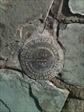 Image for U.S. Coast & Geodetic Survey C314 Benchmark - Las Vegas, NV