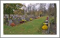 Image for Veteran cemeterie Steenbrugge - Brugge -Belgium