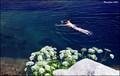 Image for Lac de Capitello / Lake Capitello  - Corsica (France)