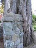Image for Eucalyptus Enveloping Stone Post - San Francisco, California