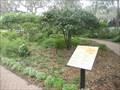Image for Marie Selby Botanical Gardens Butterfly Garden - Sarasota, FL
