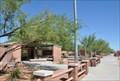Image for Arizona's Amazing Cacti