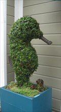 Image for Seahorse Topiary - Pier 39 - San Francisco, CA