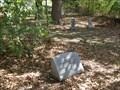 Image for A Memorial to a Little Slave Girl - Balch-Senterwood Cemetery - Alvarado, TX