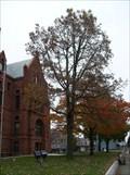 Image for Memorial Tree for George Washington's Bicentennial - La Porte, IN