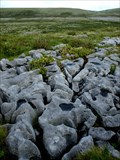 Image for The Burren - County Clare, Ireland