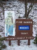 Image for Smokey the Bear in Lyman Run State Park