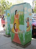 Image for Women and Education - San Jose, CA