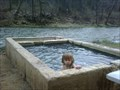Image for Woody's Hot Springs